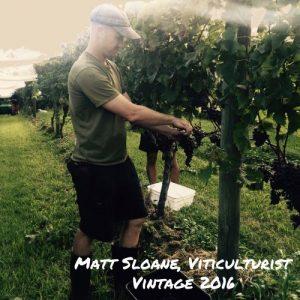 Matt Sloane - Viticulturist, Waiheke Island
